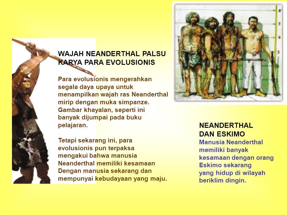 WAJAH NEANDERTHAL PALSU KARYA PARA EVOLUSIONIS Para evolusionis mengerahkan segala daya upaya untuk menampilkan wajah ras Neanderthal mirip dengan muk