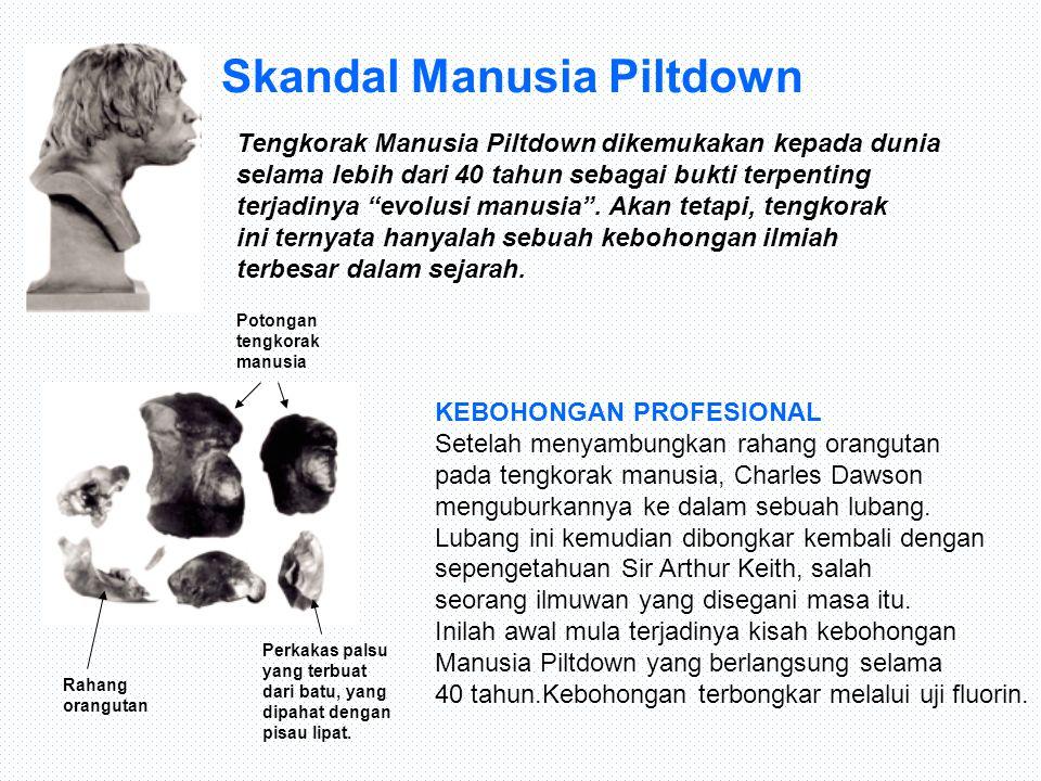 """Skandal Manusia Piltdown Tengkorak Manusia Piltdown dikemukakan kepada dunia selama lebih dari 40 tahun sebagai bukti terpenting terjadinya """"evolusi m"""