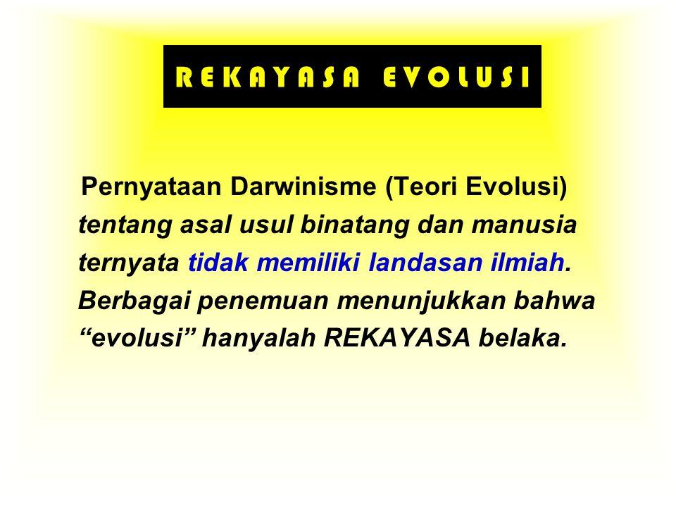 R E K A Y A S A E V O L U S I Pernyataan Darwinisme (Teori Evolusi) tentang asal usul binatang dan manusia ternyata tidak memiliki landasan ilmiah. Be