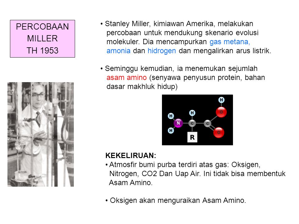PERCOBAAN MILLER TH 1953 Stanley Miller, kimiawan Amerika, melakukan percobaan untuk mendukung skenario evolusi molekuler. Dia mencampurkan gas metana