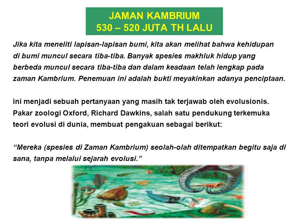 JAMAN KAMBRIUM 530 – 520 JUTA TH LALU Jika kita meneliti lapisan-lapisan bumi, kita akan melihat bahwa kehidupan di bumi muncul secara tiba-tiba. Bany