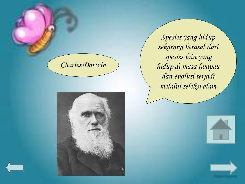 Spesies yang hidup sekarang berasal dari spesies lain yang hidup di masa lampau dan evolusi terjadi melalui seleksi alam Charles Darwin