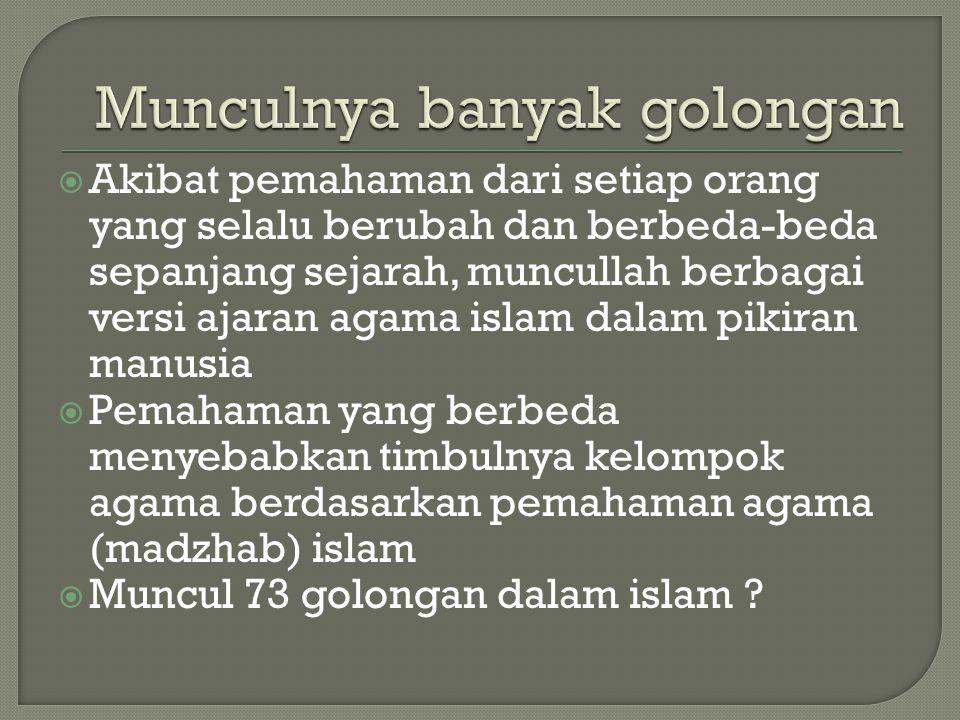  Akibat pemahaman dari setiap orang yang selalu berubah dan berbeda-beda sepanjang sejarah, muncullah berbagai versi ajaran agama islam dalam pikiran