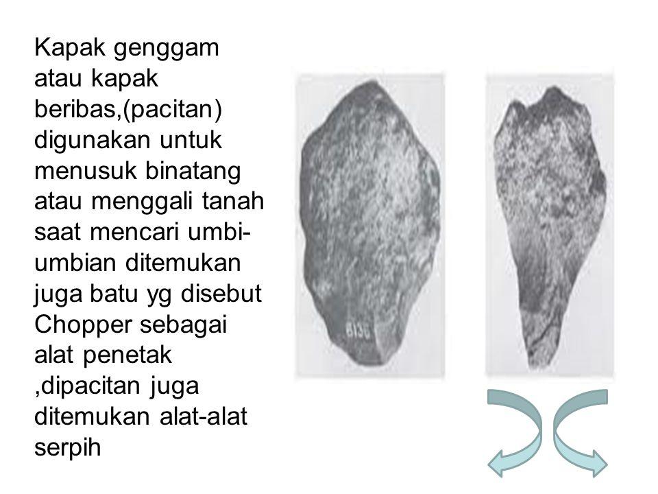 Kapak genggam atau kapak beribas,(pacitan) digunakan untuk menusuk binatang atau menggali tanah saat mencari umbi- umbian ditemukan juga batu yg diseb