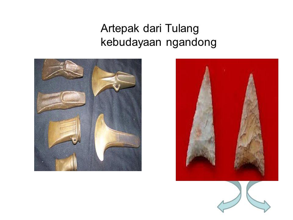 Artepak dari Tulang kebudayaan ngandong