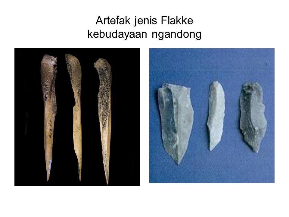 Artefak jenis Flakke kebudayaan ngandong