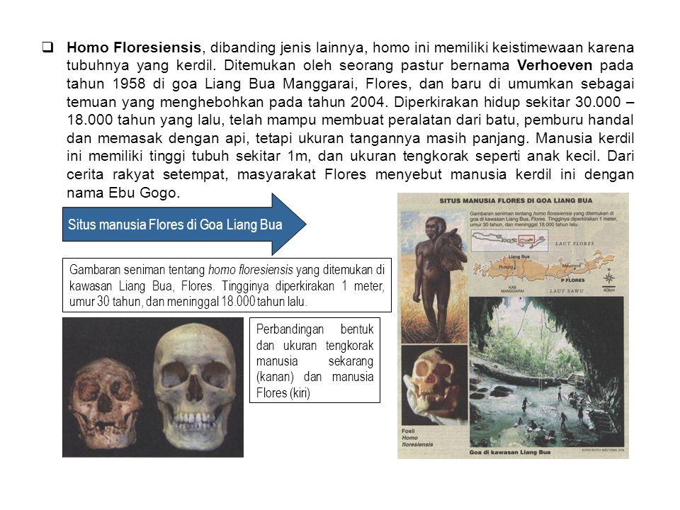  Homo Floresiensis, dibanding jenis lainnya, homo ini memiliki keistimewaan karena tubuhnya yang kerdil. Ditemukan oleh seorang pastur bernama Verhoe