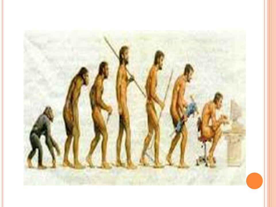 EVOLUSI Materi Perkuliahan Disusun Oleh : Beny Supriyanto, S.Pd