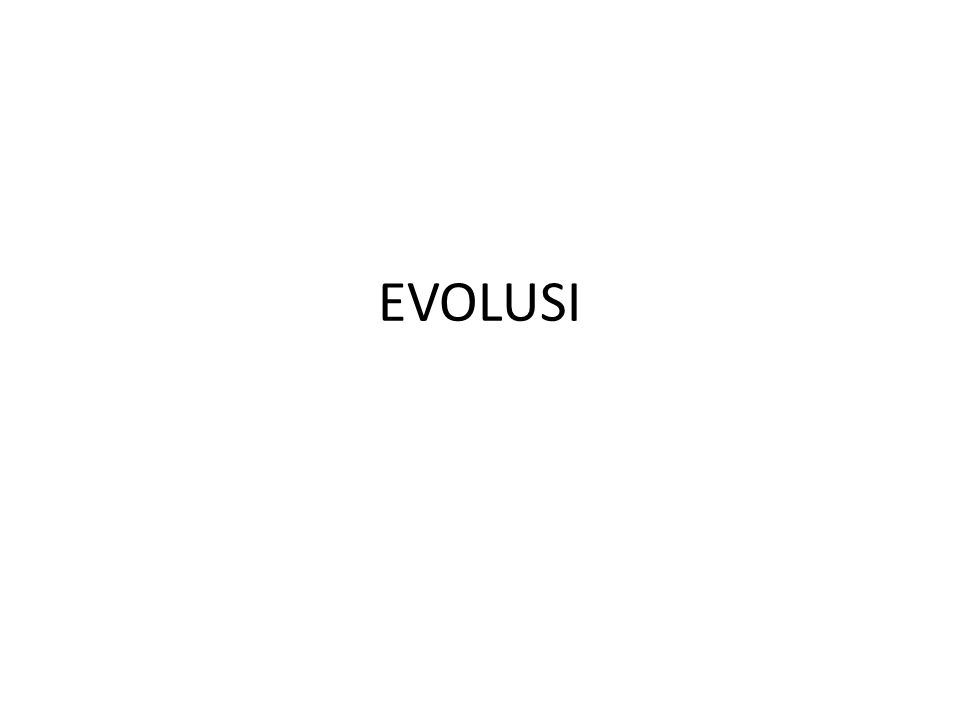 PETUNJUK EVOLUSI Fosil Proses fisika Proses kimia Perbandingan Morfologi Divergensi morfologi dan struktur homolog Konvergensi morfologi dan struktur homolog Perbandingan Biokimia Perbandingan Embriologi Perbandingan asam nukleat Fosil laba-laba yang terperangkap dalam getah pohon.