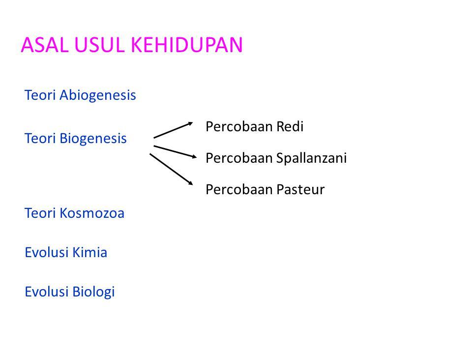ASAL USUL KEHIDUPAN Teori Abiogenesis Teori Biogenesis Percobaan Redi Percobaan Spallanzani Percobaan Pasteur Teori Kosmozoa Evolusi Kimia Evolusi Bio
