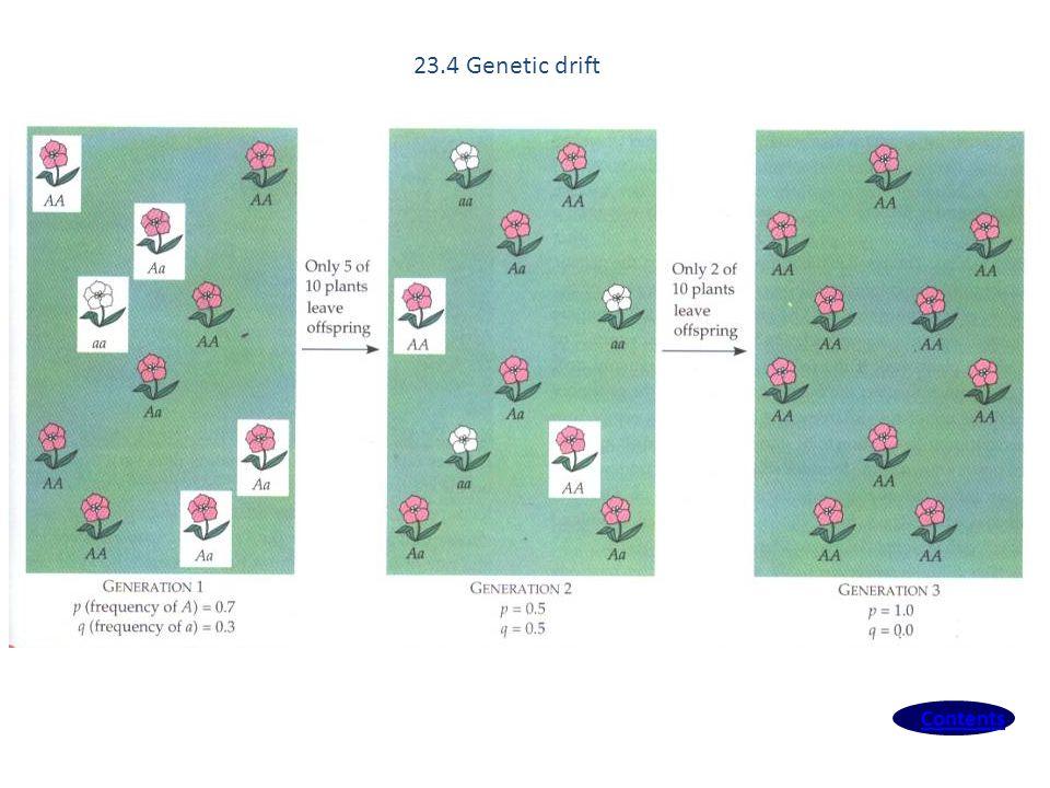 Contents 23.4 Genetic drift
