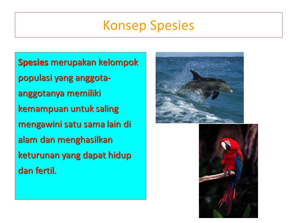 Konsep Spesies Spesies merupakan kelompok populasi yang anggota- anggotanya memiliki kemampuan untuk saling mengawini satu sama lain di alam dan mengh