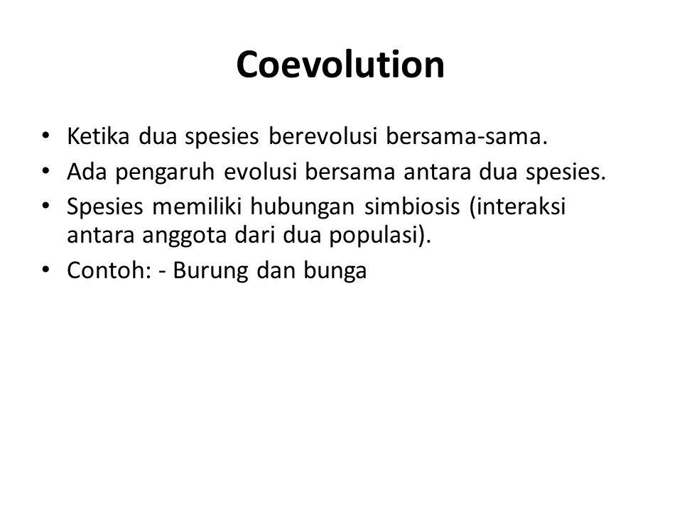 Coevolution Ketika dua spesies berevolusi bersama-sama. Ada pengaruh evolusi bersama antara dua spesies. Spesies memiliki hubungan simbiosis (interaks