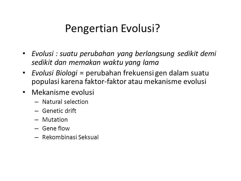 Pengertian Evolusi? Evolusi : suatu perubahan yang berlangsung sedikit demi sedikit dan memakan waktu yang lama Evolusi Biologi = perubahan frekuensi