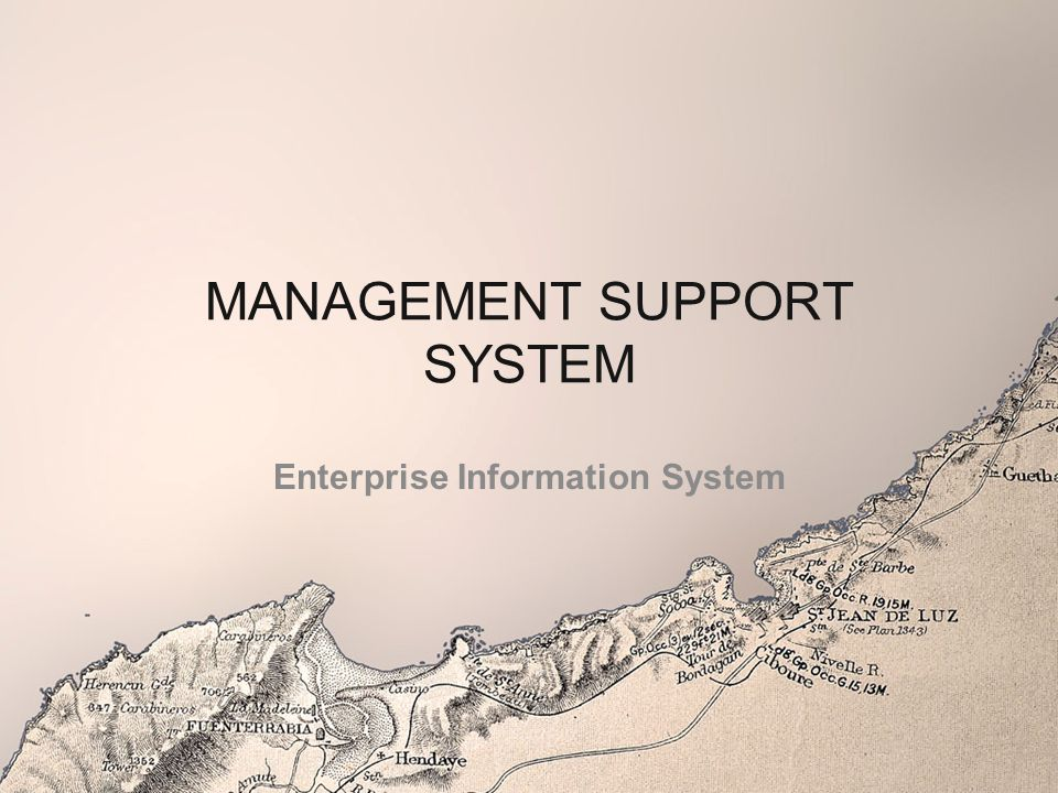 MANAGEMENT SUPPORT SYSTEM Enterprise Information System