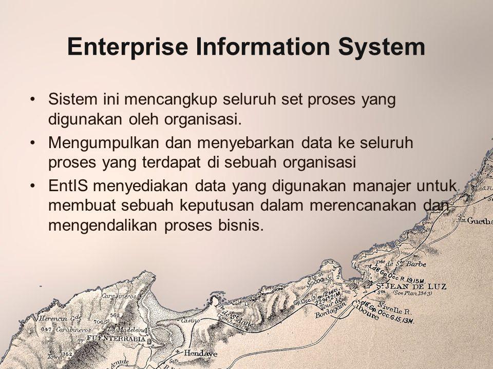 Enterprise Information System Sistem ini mencangkup seluruh set proses yang digunakan oleh organisasi. Mengumpulkan dan menyebarkan data ke seluruh pr