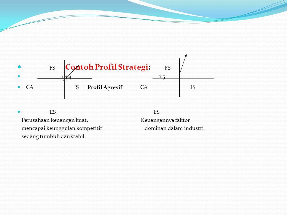 FS Contoh Profil Strategi: FS +4,4 1,5 CA IS Profil Agresif CA IS ES ES Perusahaan keuangan kuat, Keuangannya faktor mencapai keunggulan kompetitif do