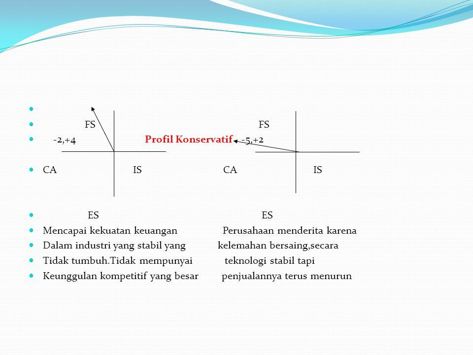 FS FS -2,+4 Profil Konservatif -5,+2 CA IS CA IS ES ES Mencapai kekuatan keuangan Perusahaan menderita karena Dalam industri yang stabil yang kelemaha
