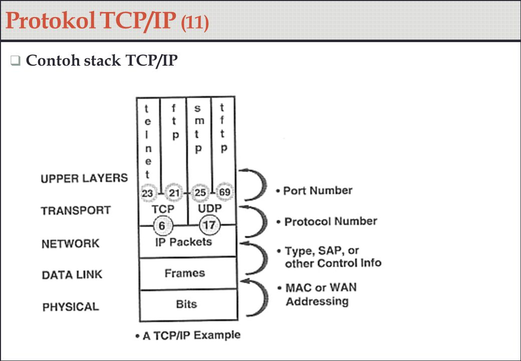Protokol TCP/IP (11)  Contoh stack TCP/IP