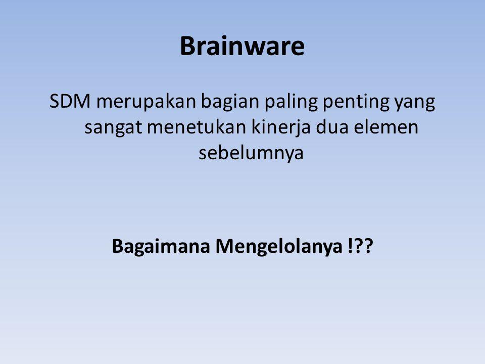 Brainware SDM merupakan bagian paling penting yang sangat menetukan kinerja dua elemen sebelumnya Bagaimana Mengelolanya !??