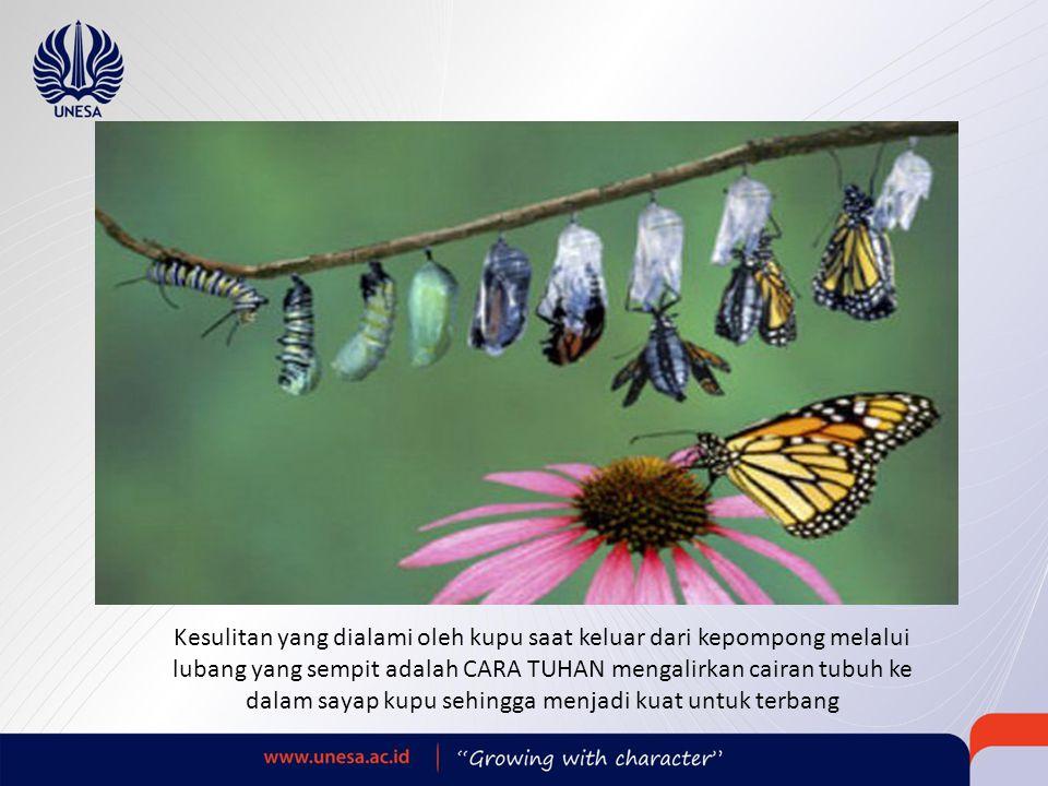 Kesulitan yang dialami oleh kupu saat keluar dari kepompong melalui lubang yang sempit adalah CARA TUHAN mengalirkan cairan tubuh ke dalam sayap kupu sehingga menjadi kuat untuk terbang