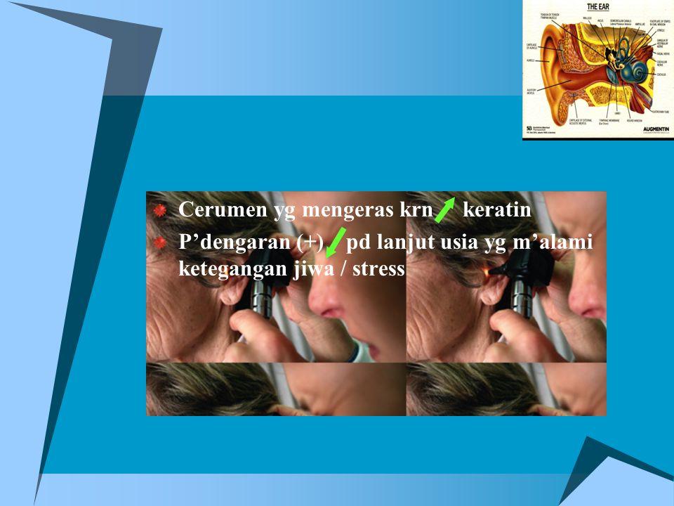 Cerumen yg mengeras krn keratin P'dengaran (+) pd lanjut usia yg m'alami ketegangan jiwa / stress
