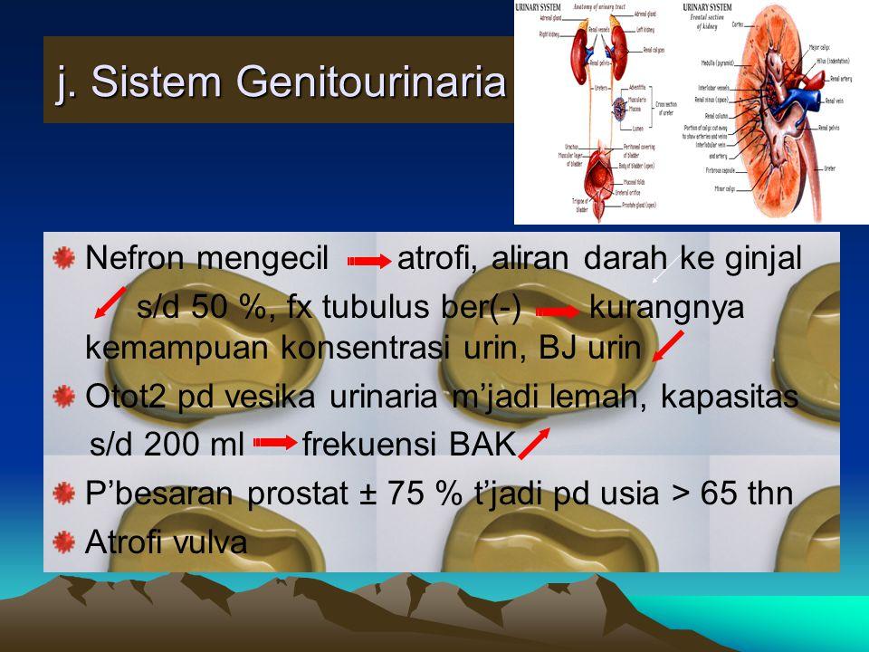j. Sistem Genitourinaria Nefron mengecil atrofi, aliran darah ke ginjal s/d 50 %, fx tubulus ber(-) kurangnya kemampuan konsentrasi urin, BJ urin Otot