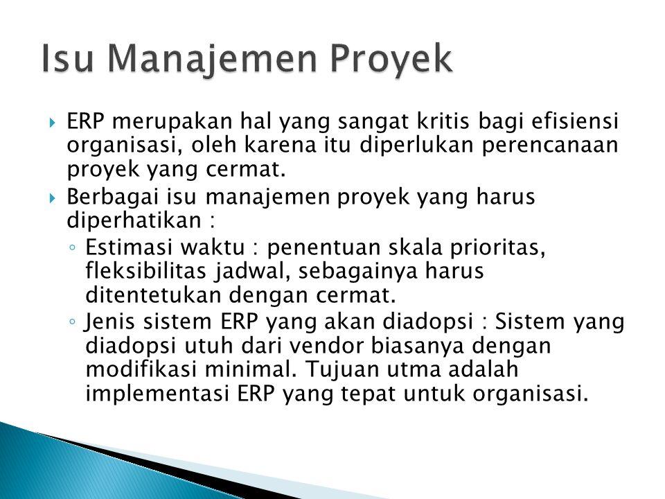  ERP merupakan hal yang sangat kritis bagi efisiensi organisasi, oleh karena itu diperlukan perencanaan proyek yang cermat.  Berbagai isu manajemen