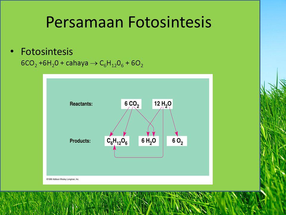 Persamaan Fotosintesis Fotosintesis 6CO 2 +6H 2 0 + cahaya  C 6 H 12 0 6 + 6O 2
