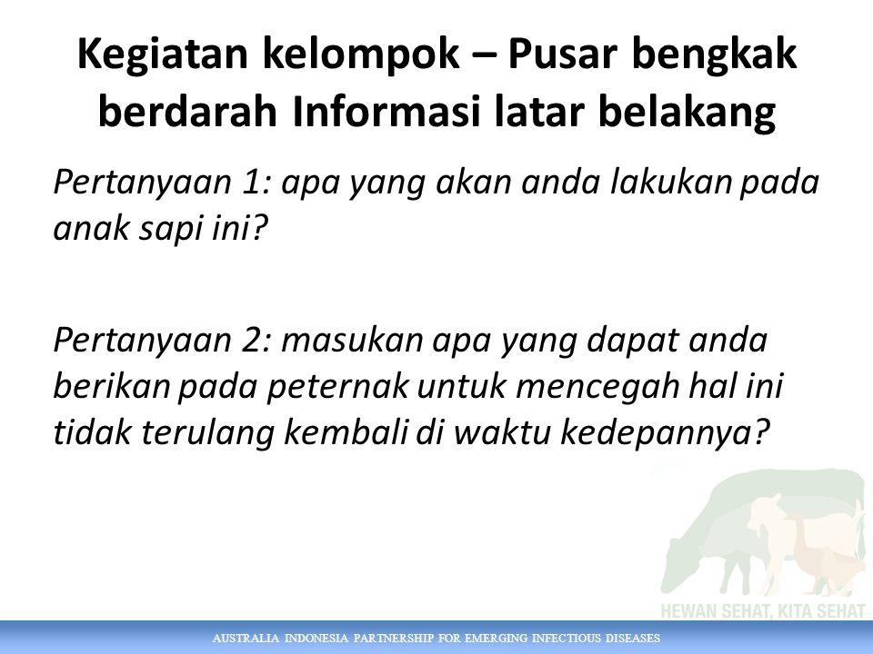 AUSTRALIA INDONESIA PARTNERSHIP FOR EMERGING INFECTIOUS DISEASES Kegiatan kelompok – Pusar bengkak berdarah Informasi latar belakang Pertanyaan 1: apa yang akan anda lakukan pada anak sapi ini.