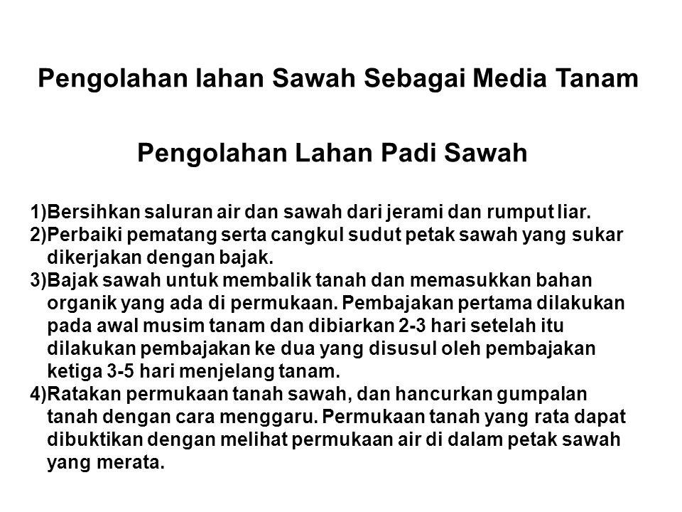 Pengolahan lahan Sawah Sebagai Media Tanam Pengolahan Lahan Padi Sawah 1)Bersihkan saluran air dan sawah dari jerami dan rumput liar. 2)Perbaiki pemat