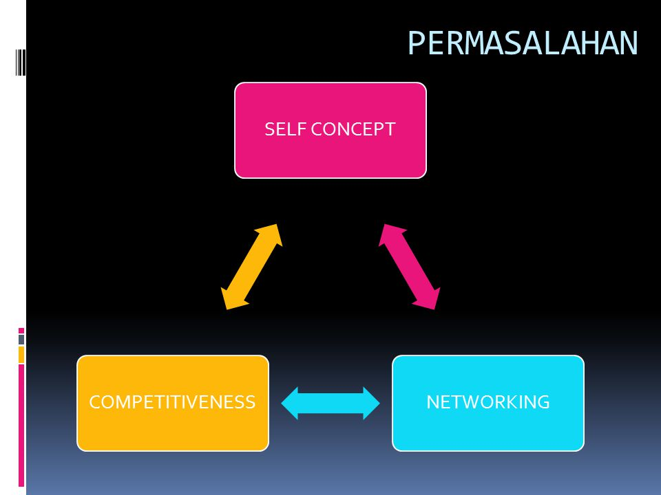 PERMASALAHAN SELF CONCEPTNETWORKINGCOMPETITIVENESS