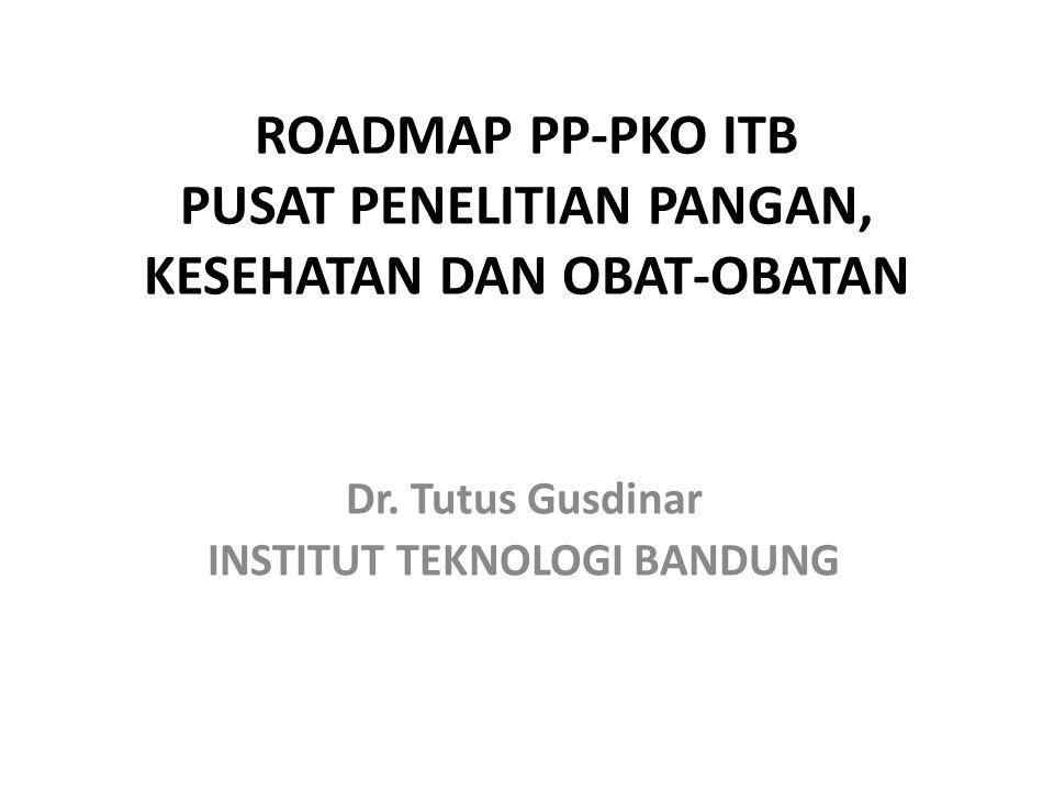 ROADMAP PP-PKO ITB PUSAT PENELITIAN PANGAN, KESEHATAN DAN OBAT-OBATAN Dr. Tutus Gusdinar INSTITUT TEKNOLOGI BANDUNG
