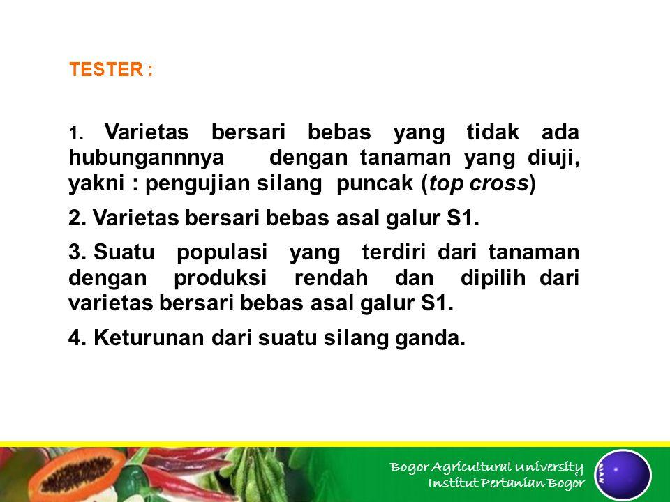 Bogor Agricultural University Institut Pertanian Bogor TESTER : 1. Varietas bersari bebas yang tidak ada hubungannnya dengan tanaman yang diuji, yakni