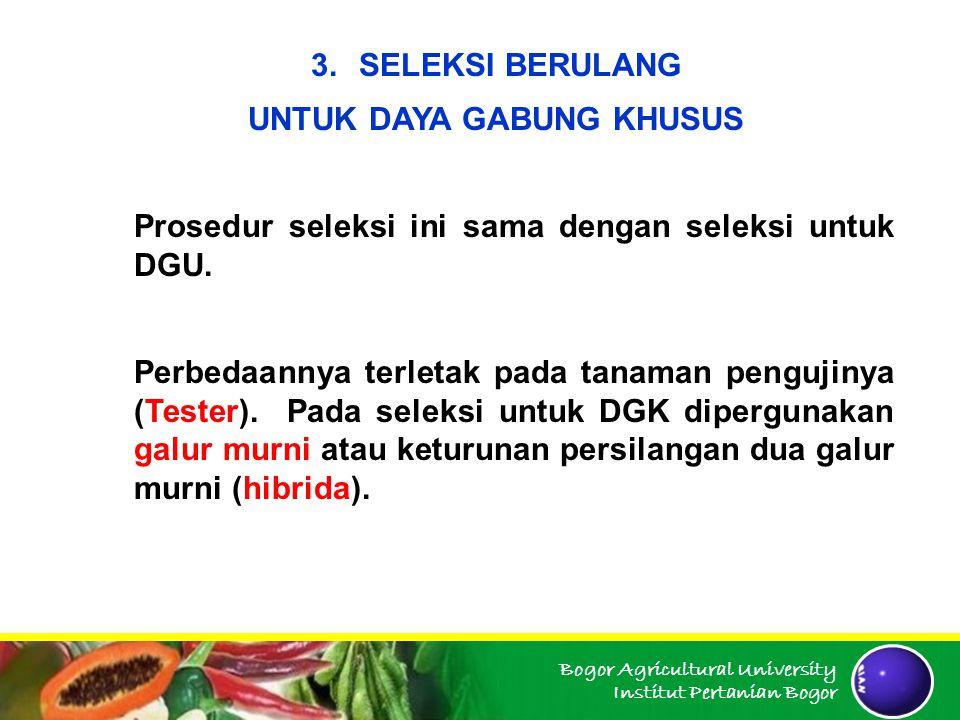 Bogor Agricultural University Institut Pertanian Bogor 3.SELEKSI BERULANG UNTUK DAYA GABUNG KHUSUS Prosedur seleksi ini sama dengan seleksi untuk DGU.