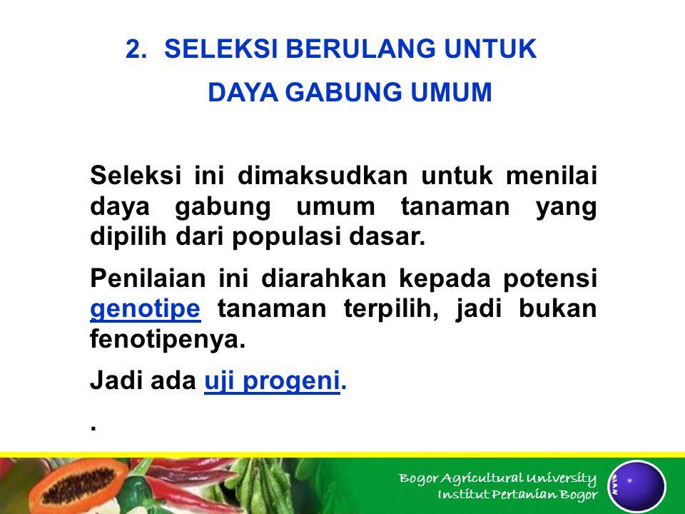 Bogor Agricultural University Institut Pertanian Bogor 2.SELEKSI BERULANG UNTUK DAYA GABUNG UMUM Seleksi ini dimaksudkan untuk menilai daya gabung umu