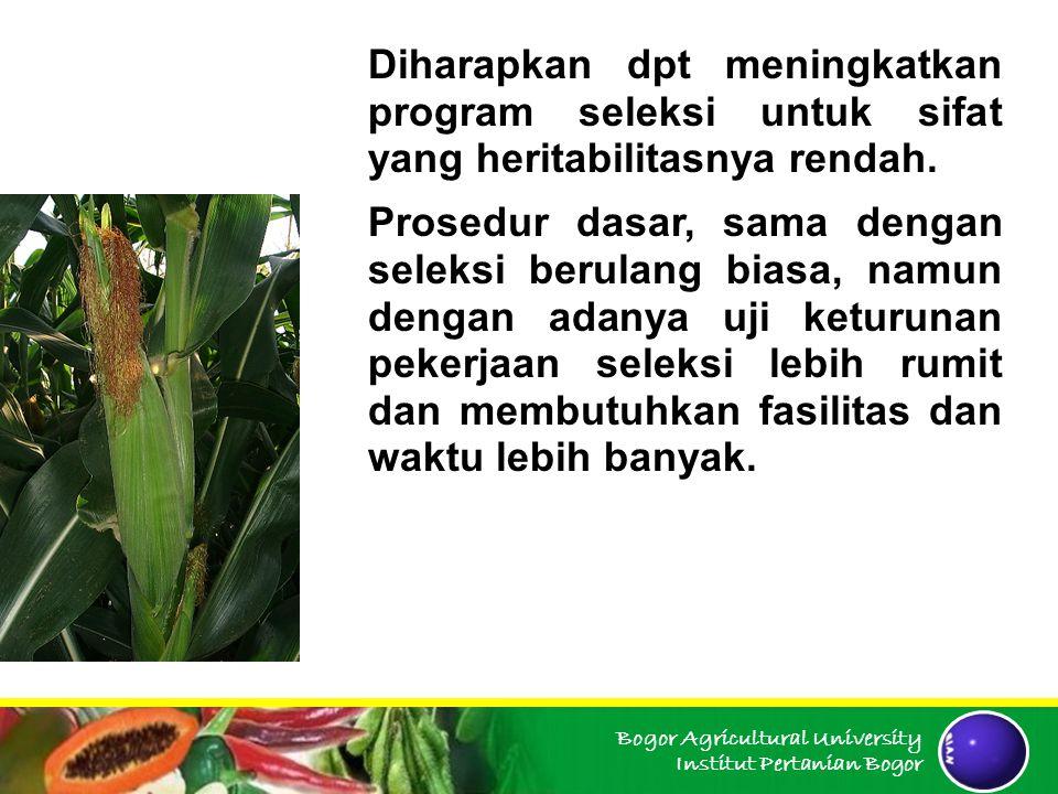 Bogor Agricultural University Institut Pertanian Bogor Diharapkan dpt meningkatkan program seleksi untuk sifat yang heritabilitasnya rendah. Prosedur