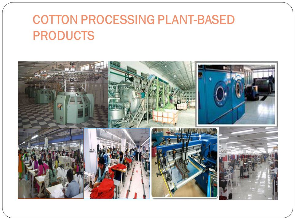 COTTON PROCESSING PLANT-BASED PRODUCTS