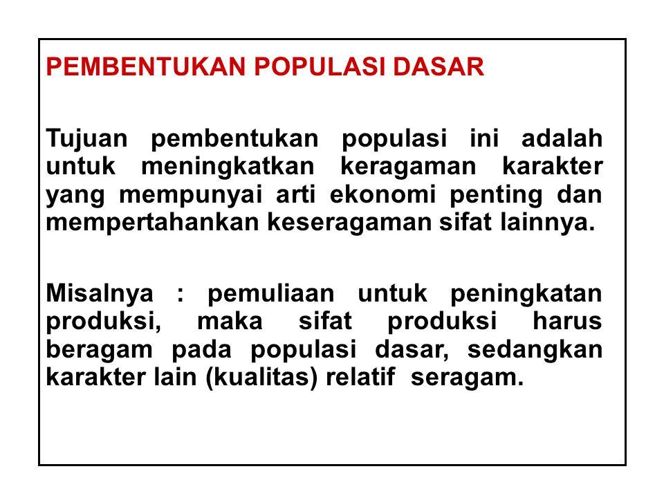 PEMBENTUKAN POPULASI DASAR Tujuan pembentukan populasi ini adalah untuk meningkatkan keragaman karakter yang mempunyai arti ekonomi penting dan memper