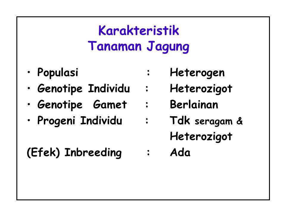 Populasi :Heterogen Genotipe Individu :Heterozigot Genotipe Gamet :Berlainan Progeni Individu :Tdk seragam & Heterozigot (Efek) Inbreeding :Ada Karakt