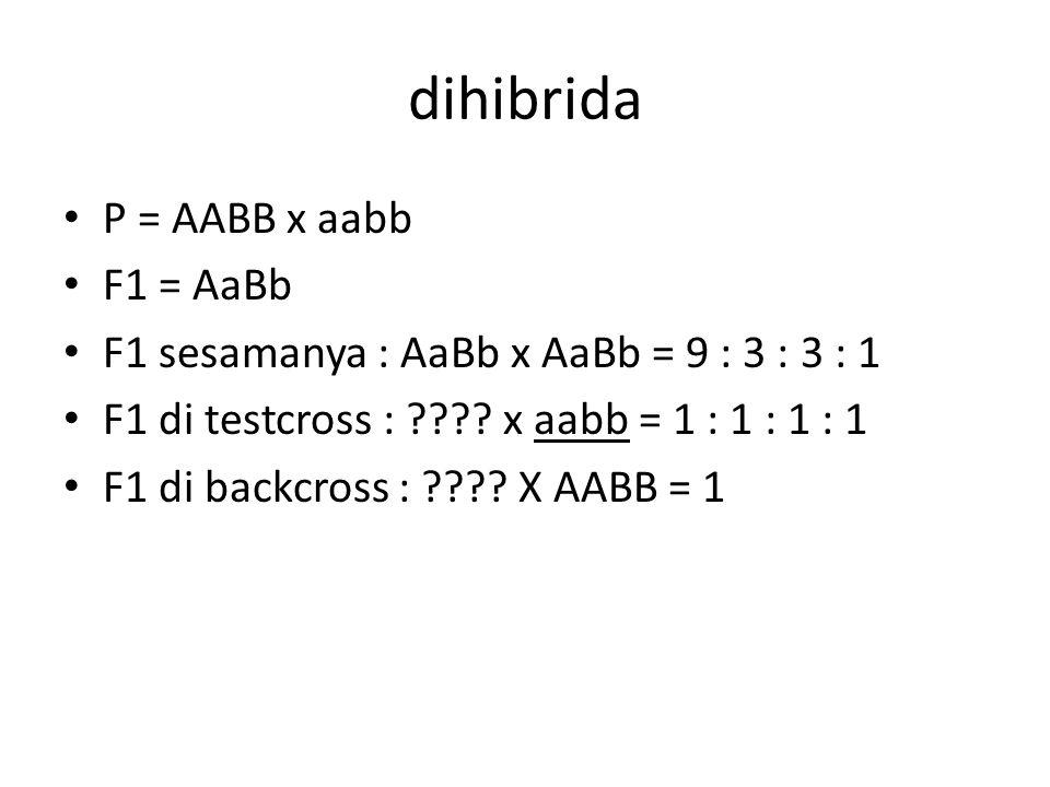 dihibrida P = AABB x aabb F1 = AaBb F1 sesamanya : AaBb x AaBb = 9 : 3 : 3 : 1 F1 di testcross : ???.