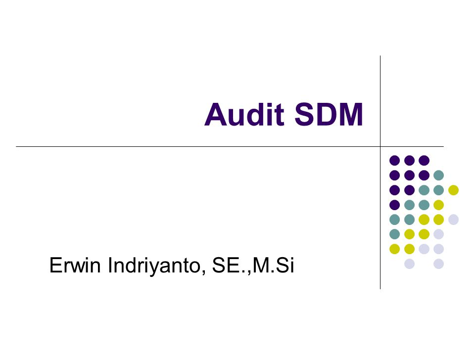 Audit SDM Erwin Indriyanto, SE.,M.Si