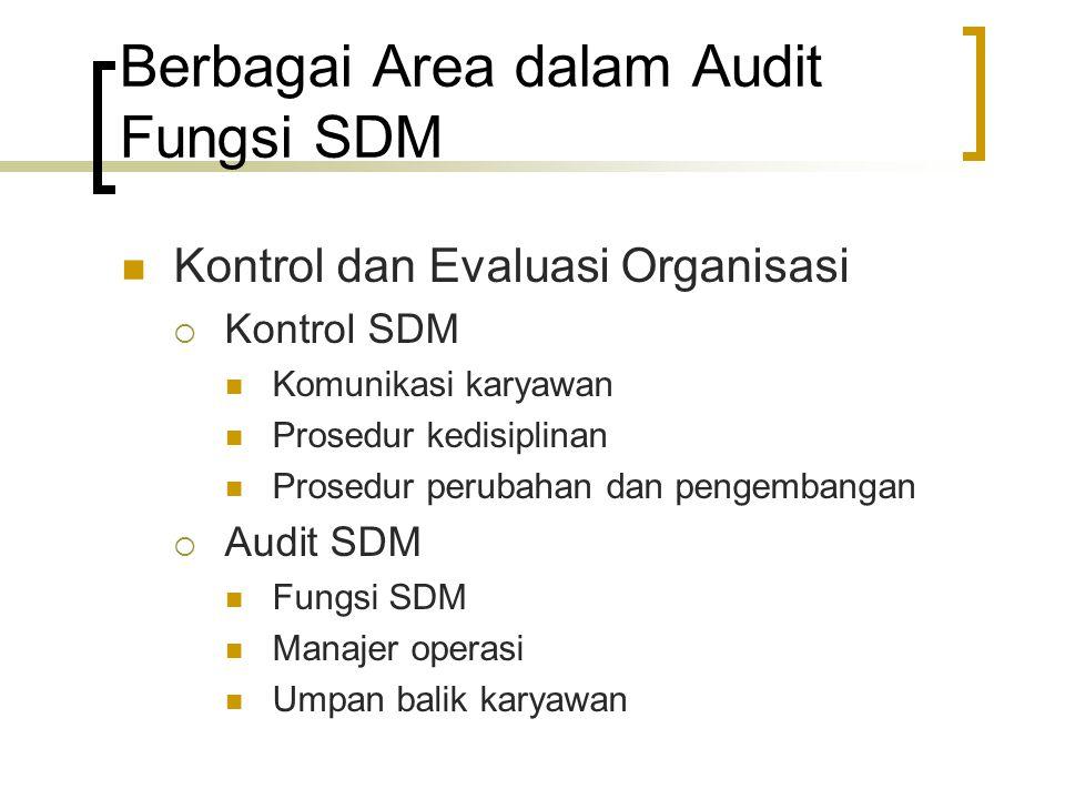 Berbagai Area dalam Audit Fungsi SDM Kontrol dan Evaluasi Organisasi  Kontrol SDM Komunikasi karyawan Prosedur kedisiplinan Prosedur perubahan dan pe