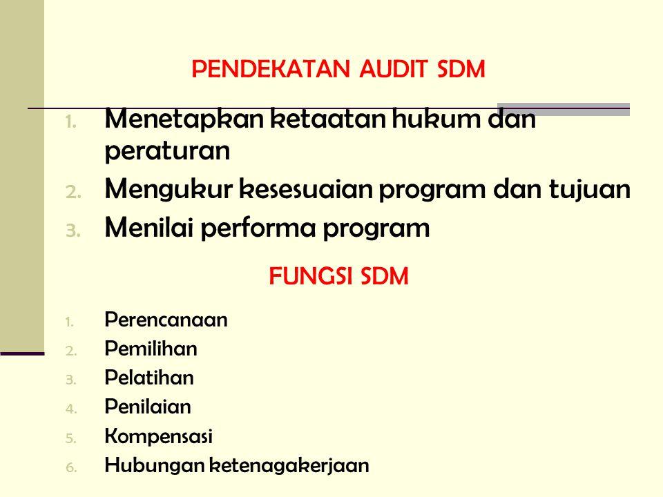 PENDEKATAN AUDIT SDM 1. Menetapkan ketaatan hukum dan peraturan 2. Mengukur kesesuaian program dan tujuan 3. Menilai performa program FUNGSI SDM 1. Pe