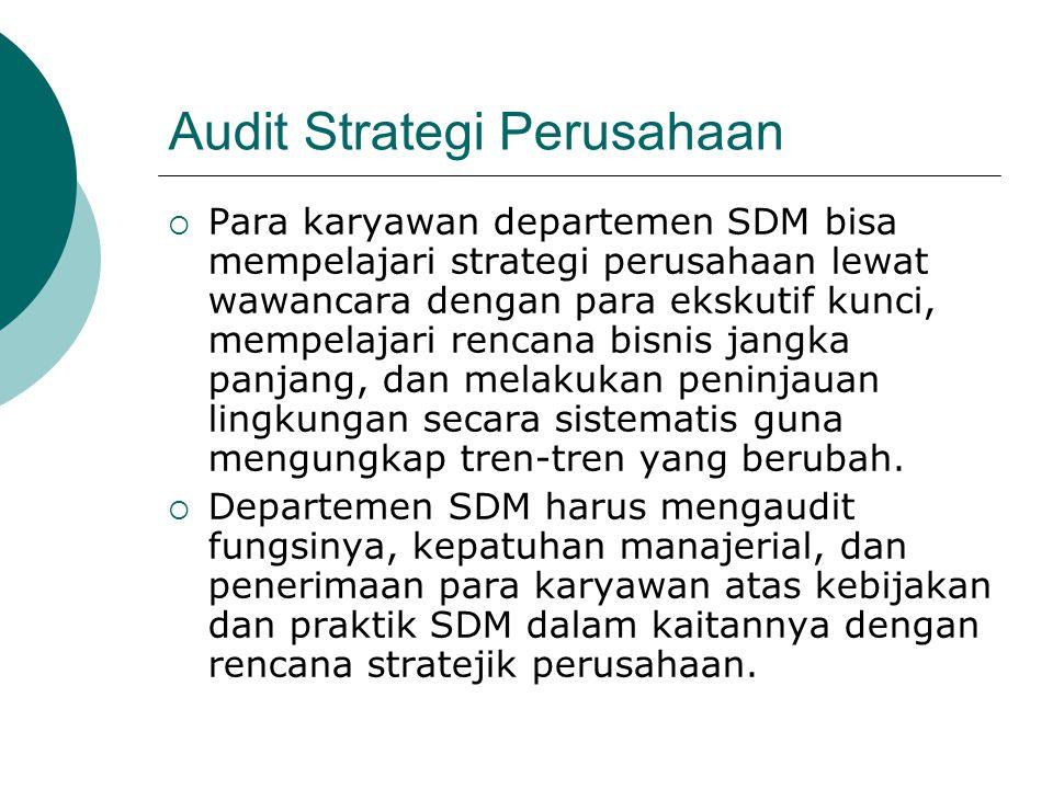 Audit Strategi Perusahaan  Para karyawan departemen SDM bisa mempelajari strategi perusahaan lewat wawancara dengan para ekskutif kunci, mempelajari