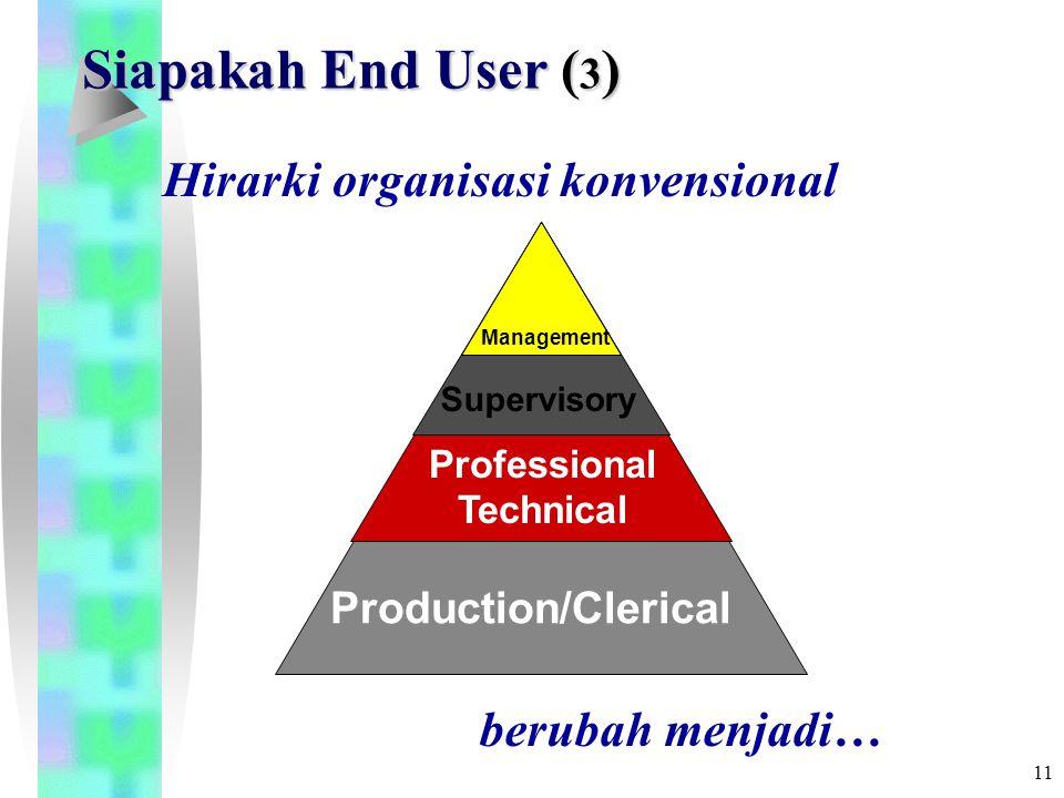 10 Siapakah End User ( 2 ) PERGESERAN PERAN Awalnya, penggunaan komputer untuk membuat keputusan dan perencanaan hanya terjadi pada tingkat puncak (top level) struktur organisasi.