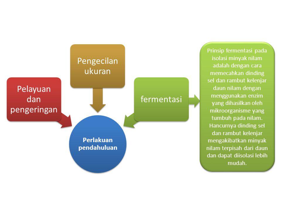 Perlakuan pendahuluan Pelayuan dan pengeringan Pengecilan ukuran fermentasi Prinsip fermentasi pada isolasi minyak nilam adalah dengan cara memecahkan