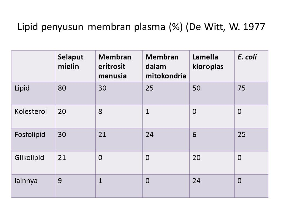 Lipid penyusun membran plasma (%) (De Witt, W. 1977 Selaput mielin Membran eritrosit manusia Membran dalam mitokondria Lamella kloroplas E. coli Lipid