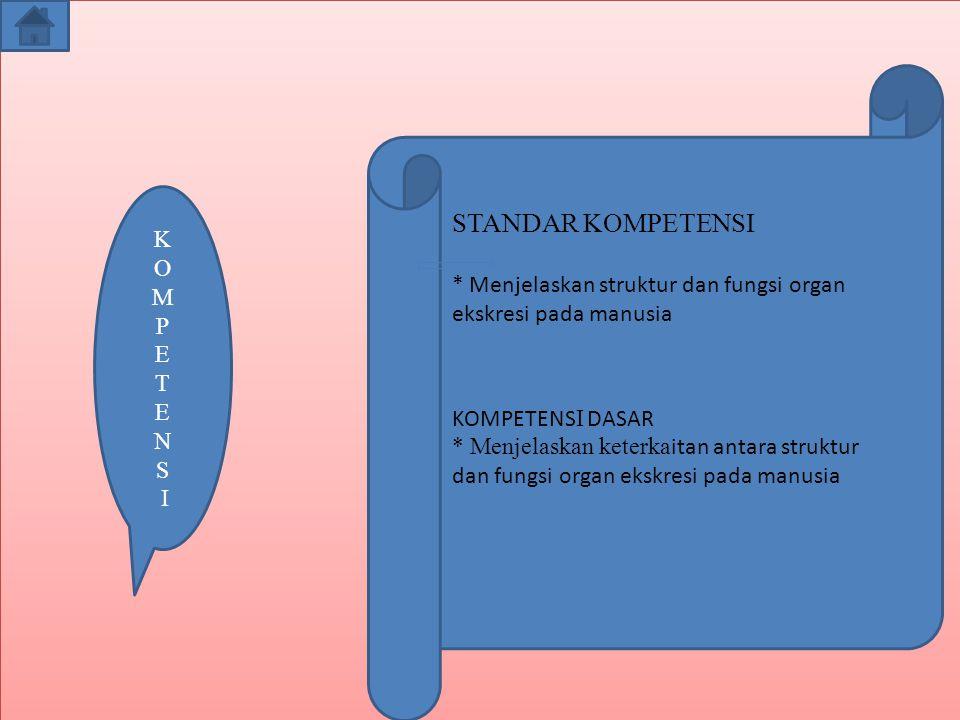 K O M P E T E N S I STANDAR KOMPETENSI * Menjelaskan struktur dan fungsi organ ekskresi pada manusia KOMPETENS I DASAR * Menjelaskan keterka itan antara struktur dan fungsi organ ekskresi pada manusia