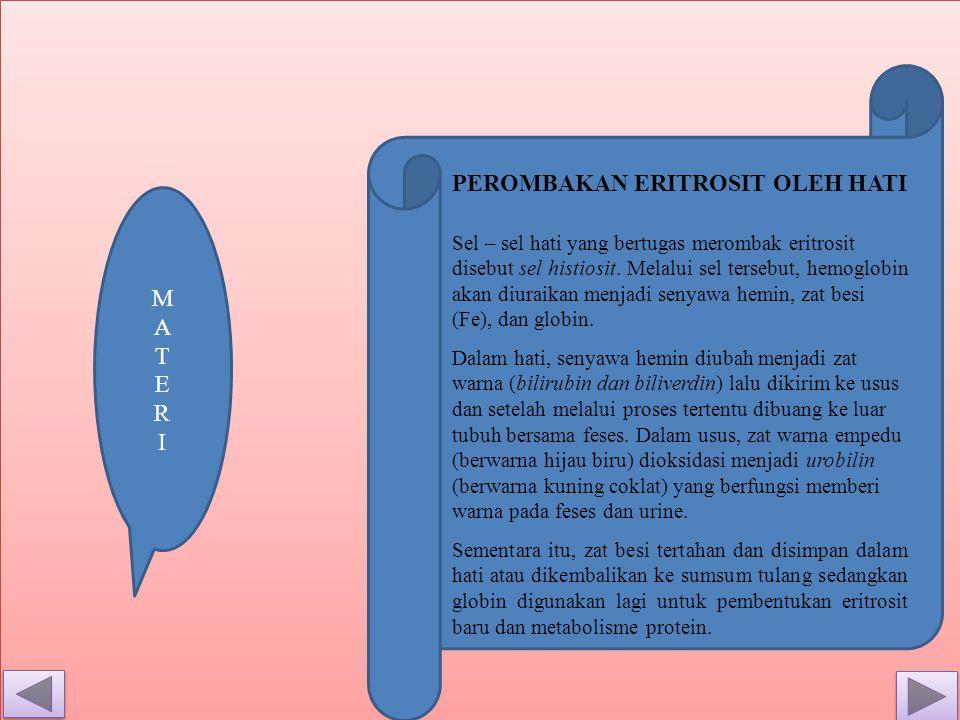 Sel – sel hati yang bertugas merombak eritrosit disebut sel histiosit.